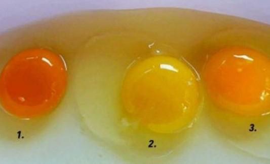 Κρόκος αυγού: Ποιος από τους τρεις σας φαίνεται πιο υγιεινός;
