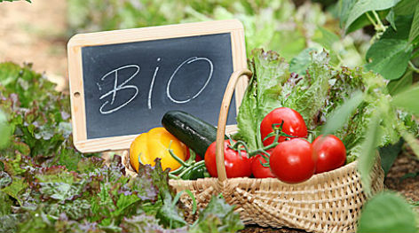 Tα βιολογικά τρόφιμα μειώνουν ή όχι τον κίνδυνο καρκίνου;