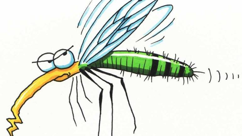 Κουνούπια τέλος! Φυσικοί τρόποι για να τα διώξετε μακριά