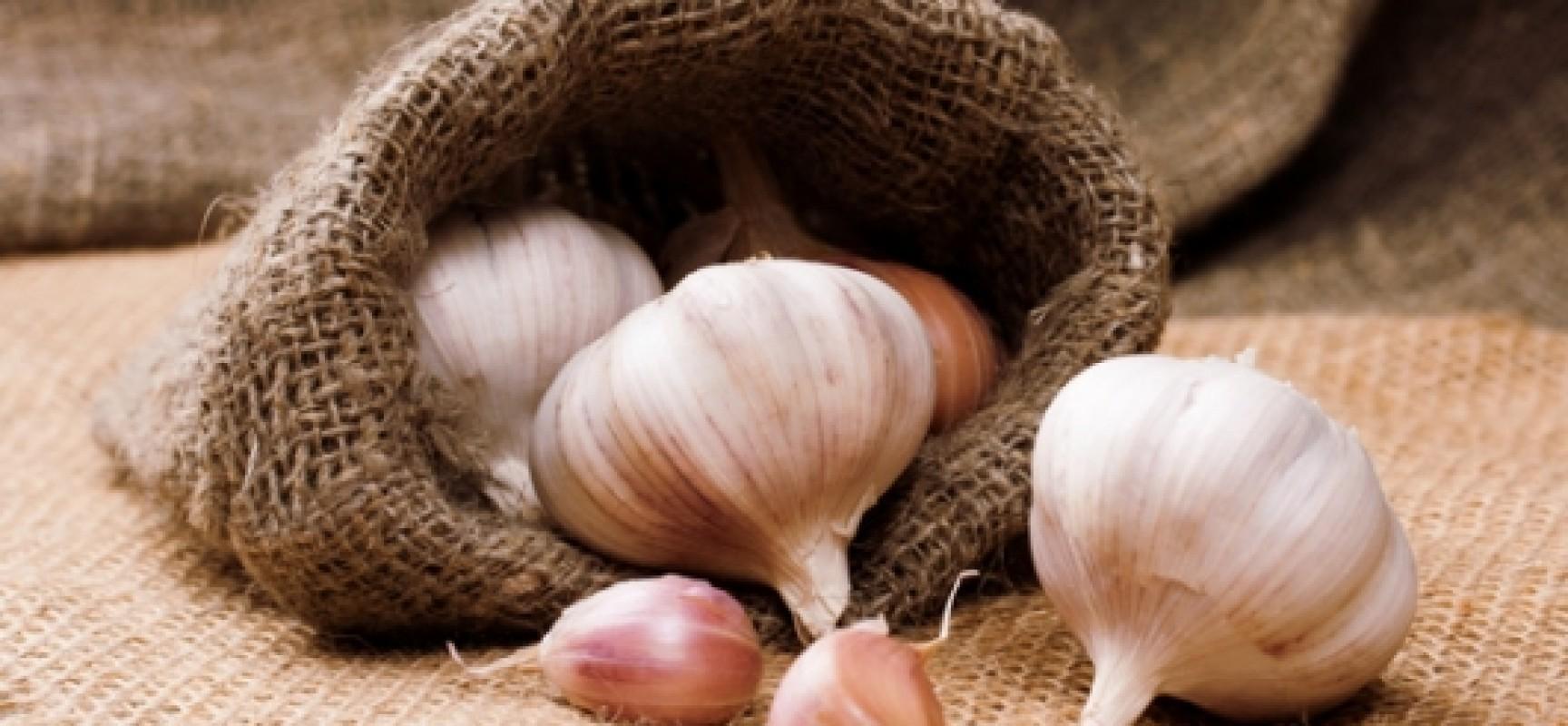 Σκόρδο: Οι απίστευτες χρήσεις & οφέλη στην υγεία