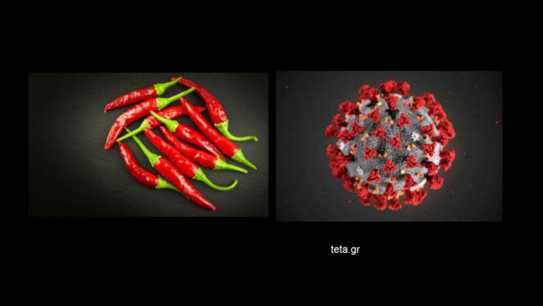 Μύθος vs αλήθεια: Θεραπεύουν ή όχι οι καυτερές πιπεριές τον covid-19;